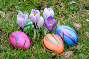 easter eggs canstockphoto3397918 (2)