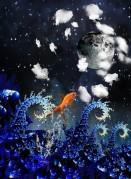 goldfish canstockphoto3359699 (2)