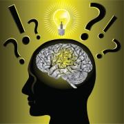 brain canstockphoto8956548 (2)