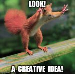 squirrel creative idea