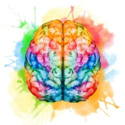 41907601 - beautiful vector image with nice watercolor brain